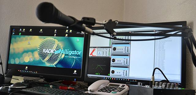 Radio Alligator est de retour !
