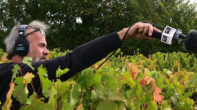 RadioVino est la première radio digitale consacrée au vin